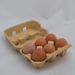 Doos eieren M 6 st
